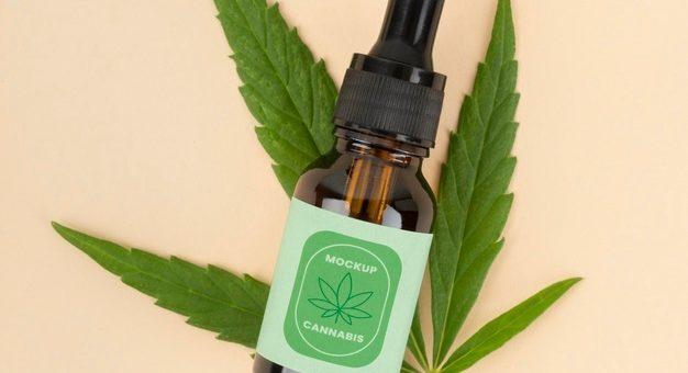 ¿Es permitido el uso del cannabis de forma medicinal?